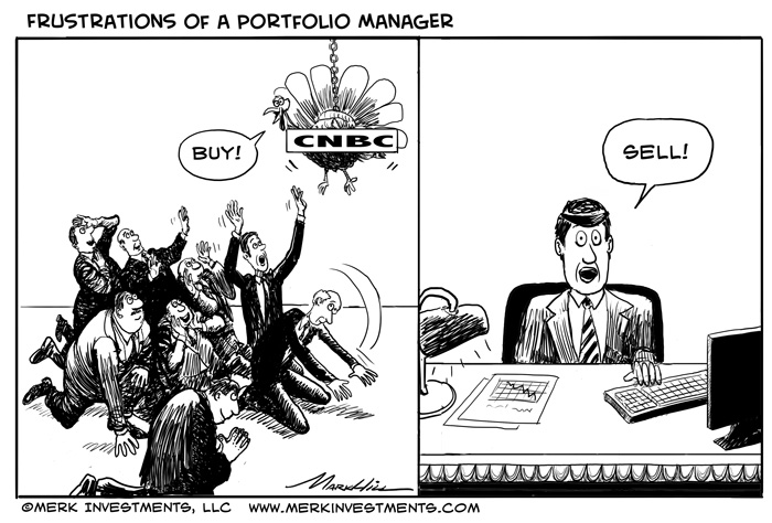 Frustrations of a Portfolio Manager
